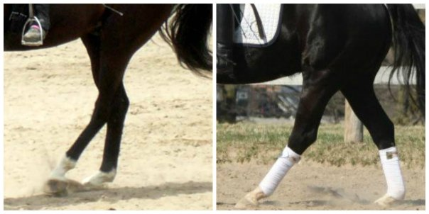Impulsion How Two Easy Strides Of Energy Might Solve Your